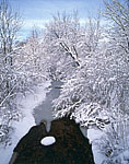 Whetstone Brook after Heavy Snow