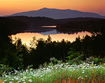 Predawn over Daisies, Mt. Monadnock and Mountain Reservoir