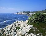 Shoreline, Isle Au Haut