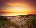 Predawn, Sandy Neck Dunes and Bay