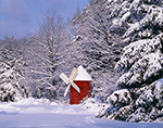 Little Red Windmill in Winter Scene