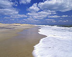 Beach at Pea Island National Wildlife Refuge