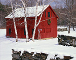 Little Red Barn and White Birches in Snow
