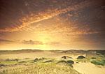 Sun Rising Over Provincelands Dunes