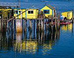 Yellow Lobster Shacks on Pier, Burnt Coat Harbor