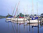 Sloops at Dock, Cook's Landing Marina, York River, Western Shore Chesapeake Bay