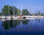 Sailboats at Dock, Stingray Point Marina, Rappahannock River, western shore Chesapeake Bay