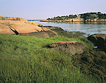 Marsh and Granite on Shoreline, Horse Island looking toward High Island, The Thimbles