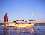 Chinese Junk-rigged Sailboat, West Neck Harbor