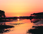 Sunrise at Chincoteague National Wildlife Refuge