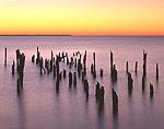 Remains of Old Pier, Potomac River at Frances Karn Boardwalk