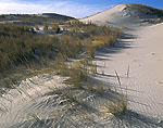 Dunes, Crane Beach