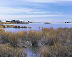 Salt Marsh, Fleet Island
