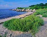 Small Beach on Pine Island, Fishers Island Sound