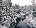 Salmon River in Winter