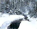 Tributary of Ellis River, White Mountain National Forest