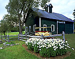 Green Barn with Cupola, Wagon and Daisies