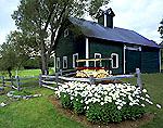 Green Barn with Cupola, Wagon and Daisies