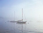 Boats in Pepperell Cove in Fog with Morning Sun