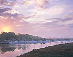 Shrimp Boat Fleet at Sunrise, Darien River
