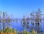 Lake Conway
