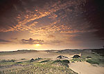 Sun Rising over Dunes, Provincelands
