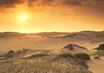 Morning Sun over Dunes, Provincelands