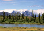 Mt. Pendleton and Alaska Range