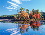 Fall Foliage at Harvard Pond with Reflections in Water