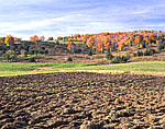 Newly-plowed Field and Vermont Farmland with Fall Foliage