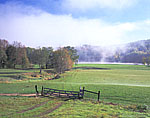 Sheep Pasture and Banks of Connecticut River in Early Morning