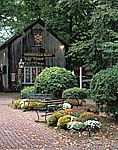 The Christmas Barn with Chrysanthemums and Benches