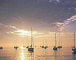 Sailboats in Evening Light, Westport Harbor