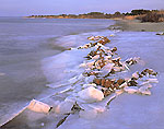 Ice at Salt Pond Edge, Ninigret Conservation Area