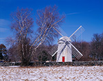 Jamestown Historical Windmill and Birches