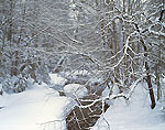 Oliverian Brook Under Heavy Snow, White Mountains National Forest