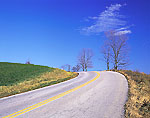 Bend in a Country Road with Bright Blue Sky