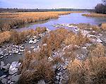 Marsh along Dead Creek in Early Winter