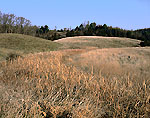 Cattail Marsh and Rolling Meadows, Nature Sanctuary, Nature Conservancy