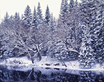 Winter Shoreline, Magalloway River