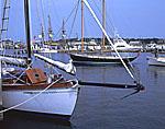 "Bow of ""Ayuthia"" (Sailing Ketch) and Schooner, Vineyard Haven Harbor"