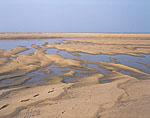 Sand Patterns, Herring Cove Beach, Cape Cod National Seashore