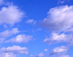 White, Puffy Clouds (Cumulus) and Blue Sky