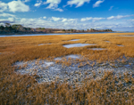 Salt Marsh and Ice near Cape Poge Bay and Tomo Neck, Chappaquiddick Island, Martha's Vineyard, Edgartown, MA