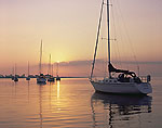 Sailboats on Saugatuck River at Sunrise
