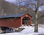 Arlington Covered Bridge with Oak Tree in Winter