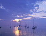 Sailboats in Evening Light, Westport Harbor