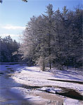 Morning Sunlight on Millers River in Winter