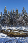 Woodlands and Deerfield River after Fresh Snowfall, Green Mountain National Forest, Searsburg, VT
