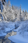 Small Brook Flows through Snow-covered Woodlands in Winter, Green Mountain National Forest, Wardsboro, VT